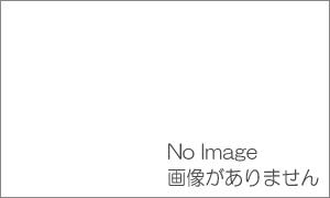 札幌市街ガイドのお薦め ラーメンしろくま